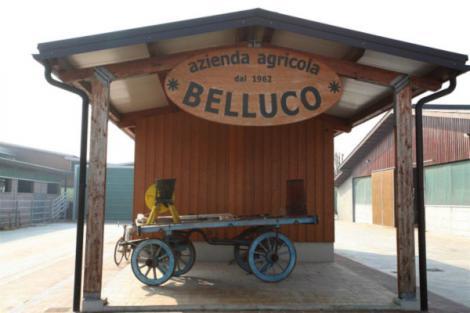 L'exploitation agricole de la famille Belluco est située à Bovolenta, près de Vérone.